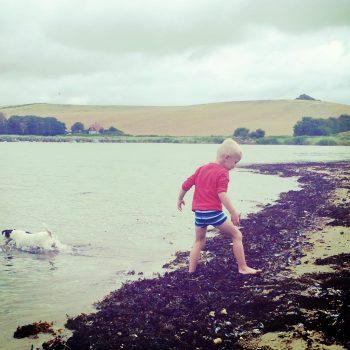 Leg ved stranden